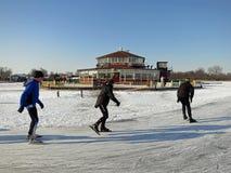 зима Голландии Стоковая Фотография RF