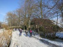 зима Голландии Стоковая Фотография
