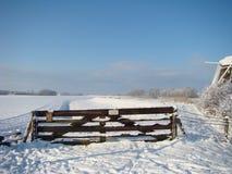 зима голландского ландшафта типичная стоковое изображение rf