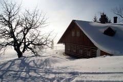 зима гористой местности коттеджа Стоковые Изображения