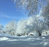Зима гористой местности Стоковое фото RF