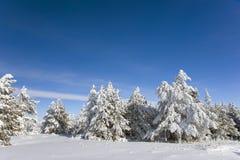 зима горного вида Стоковая Фотография RF