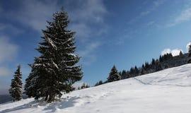 зима горы ландшафта Стоковые Фото