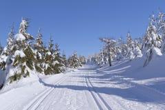 зима горы ландшафта стоковое изображение