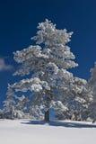 зима горы дня Стоковые Изображения RF