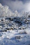 зима горы Стоковая Фотография