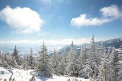 зима гор ландшафта Болгарии bansko Горы Piatra Craiului Стоковая Фотография RF
