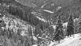 зима гор ландшафта giurgeu стоковые изображения rf
