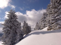 зима гор ciucas Стоковое Изображение RF