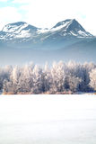 зима гор gudauri caucasus Georgia Норвегия Стоковая Фотография RF