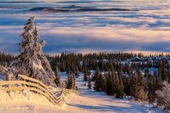 зима гор gudauri caucasus Georgia Стоковые Изображения RF