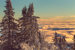 зима гор gudauri caucasus Georgia Стоковые Изображения
