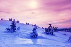 зима гор gudauri caucasus Georgia Стоковое Изображение RF