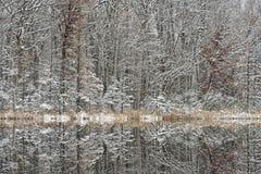 Зима, глубокие отражения озера Стоковые Изображения RF