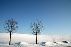 зима Дании Стоковые Фотографии RF