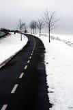 зима Дании Стоковые Изображения