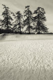 зима дня снежная стоковое изображение
