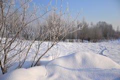 зима дня солнечная Санкт-Петербург Рыбалка Стоковое Изображение RF