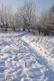 зима дня солнечная Санкт-Петербург Рыбалка Стоковые Фото