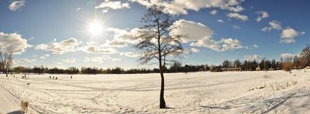 зима дня солнечная Стоковые Фото