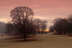 зима дня s Стоковые Фото