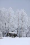зима дома Стоковые Фото