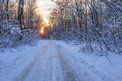 зима дороги деревенская Стоковые Изображения