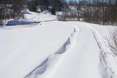 зима дороги пущи Стоковое Фото