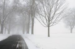 зима дороги тумана Стоковые Изображения