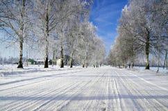 зима дороги Стоковая Фотография RF
