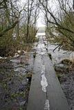 зима дорожки валов деревянная стоковые фотографии rf