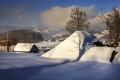 зима лебедя frostwork предпосылки голубая мечт Стоковое Изображение