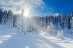 зима европейских гор alps снежная Стоковое Изображение