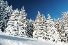 зима европейских гор alps снежная Стоковая Фотография RF