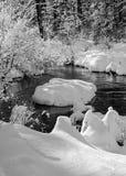 Зима, заводь озера Стоковое Изображение