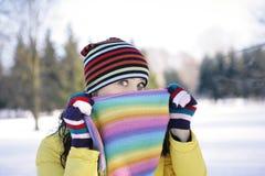 зима замораживания Стоковое Изображение