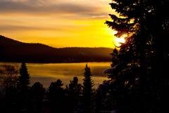 зима захода солнца пущи Стоковое Изображение RF