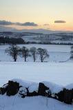 зима захода солнца снежка Стоковые Изображения
