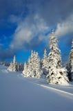 зима захода солнца Стоковое фото RF