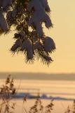 зима захода солнца гор s вечера ural Стоковые Изображения RF