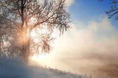 Зима, зим-прилив, зима Стоковая Фотография RF
