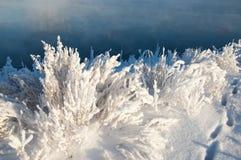 Зима, зим-прилив, зима Стоковое Фото