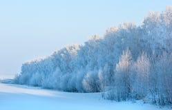Зима, зим-прилив, зима Стоковое Изображение RF