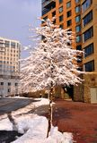 зима знака Стоковое Фото