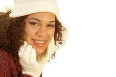зима знамени Стоковая Фотография