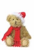 зима игрушечного медведя Стоковое Изображение