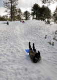 зима игр Стоковая Фотография RF