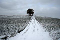 Зима 1797 дистантная Стоковые Изображения RF
