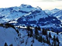 Зима и снег на высокогорных пиках в горной цепи Glarus Альп стоковое фото