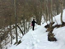 Зима и снег, шаг за шагом стоковое фото rf